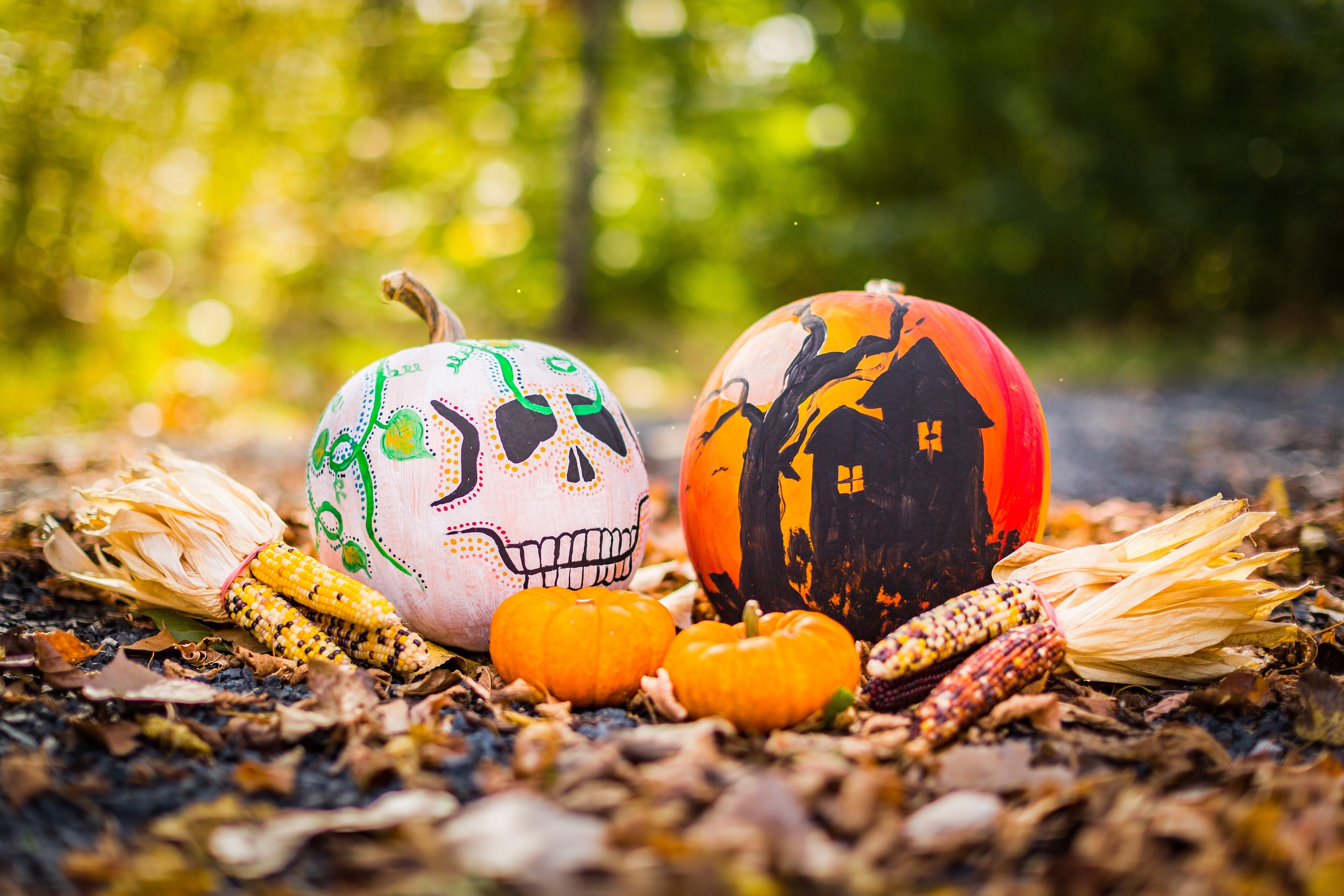 Allow your Scouts and Guides to unleash their creative side with some Halloween-inspired pumpkin art